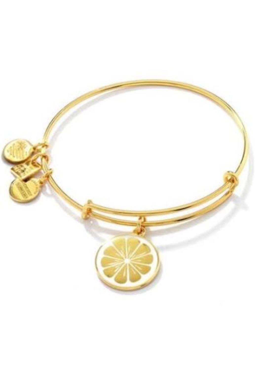 """Alex and Ani Alex And Ani Charity Pediatric Cancer Research """"Zest For Life"""" Bangle - Front Cropped Image"""