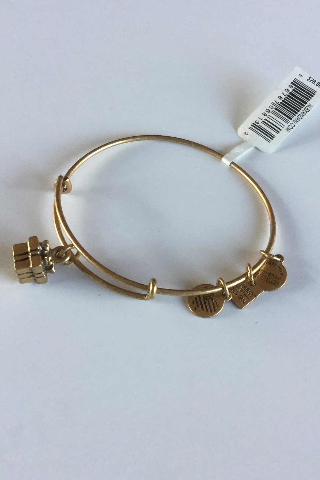 "Alex and Ani Alex And Ani Charity ""Gift Box"" American Cancer Society Bangle - Front Full Image"