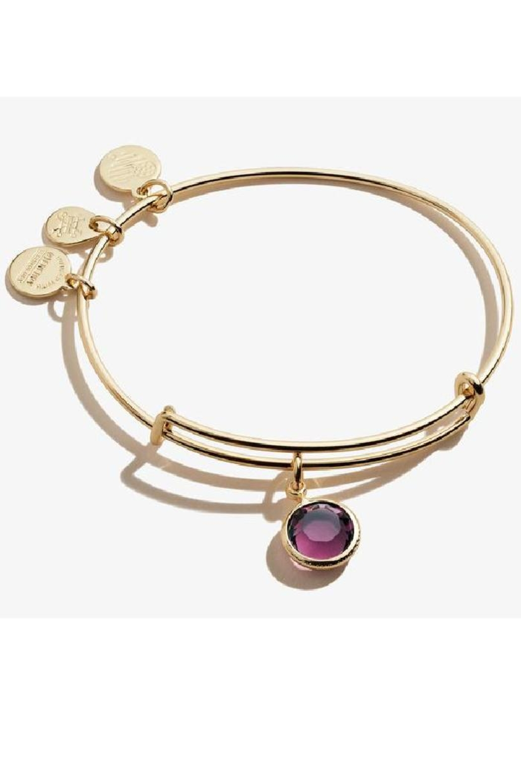 Alex and Ani Alex And Ani February Birthstone Bangle - Front Cropped Image