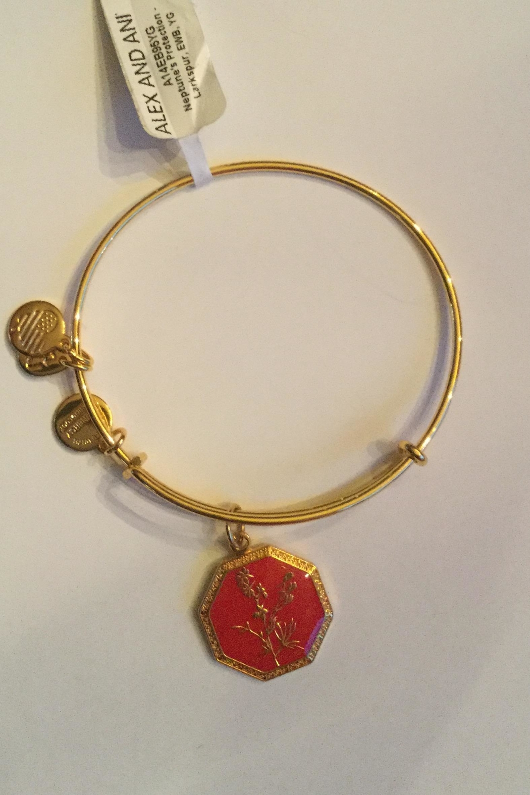"Alex and Ani Alex And Ani ""Neptune's Protection"" Expandable Bangle - Main Image"