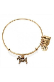 "Alex and Ani Alex And Ani ""Monopoly Dog"" Bangle - Front cropped"