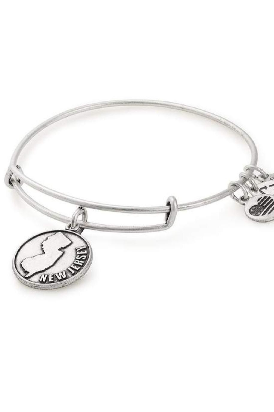 Alex and Ani Alex And Ani New Jersey Expandable Bangle - Front Cropped Image