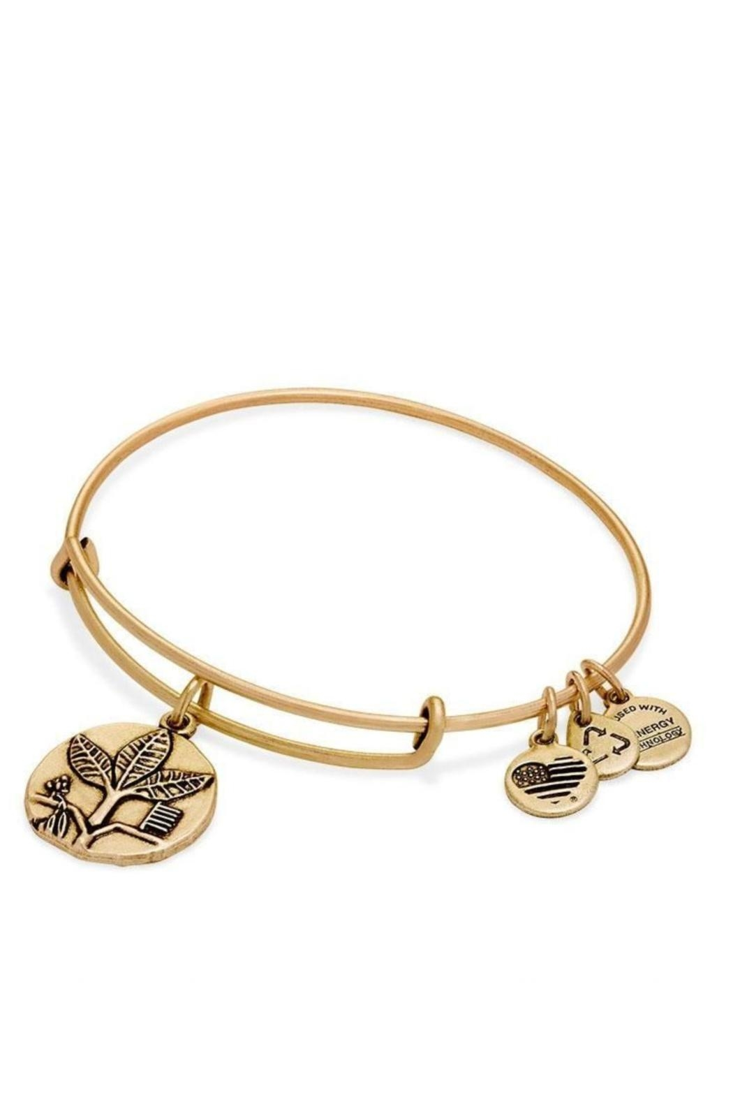 Alex and Ani Alex And Ani Ruler Of The Woods