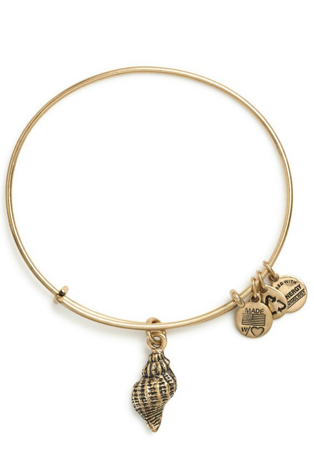"""Alex and Ani Alex And Ani """"Conch Shell"""" Bracelet - Front Cropped Image"""