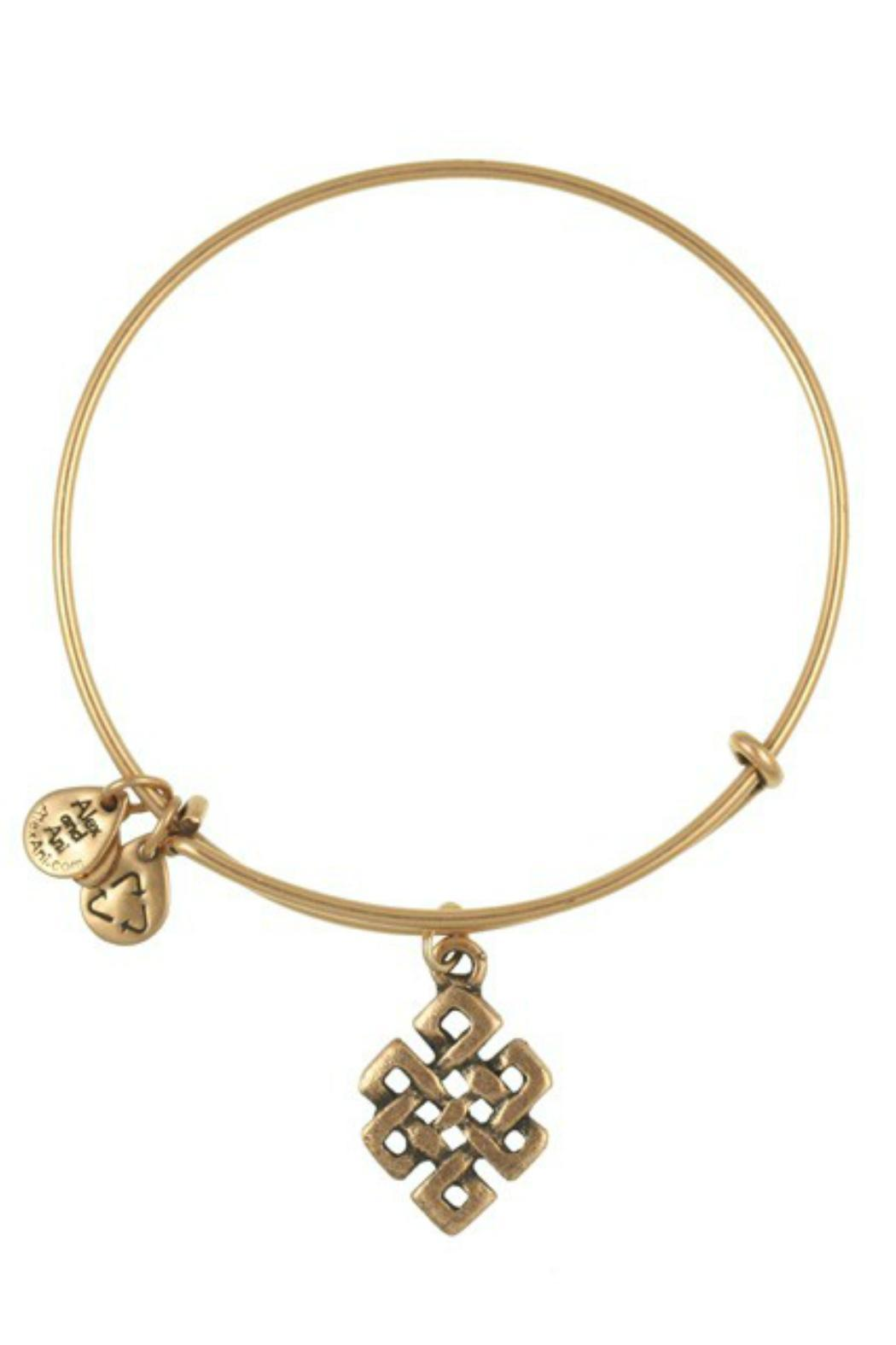 Alex and Ani Endless Knot Bangle - Front Cropped Image