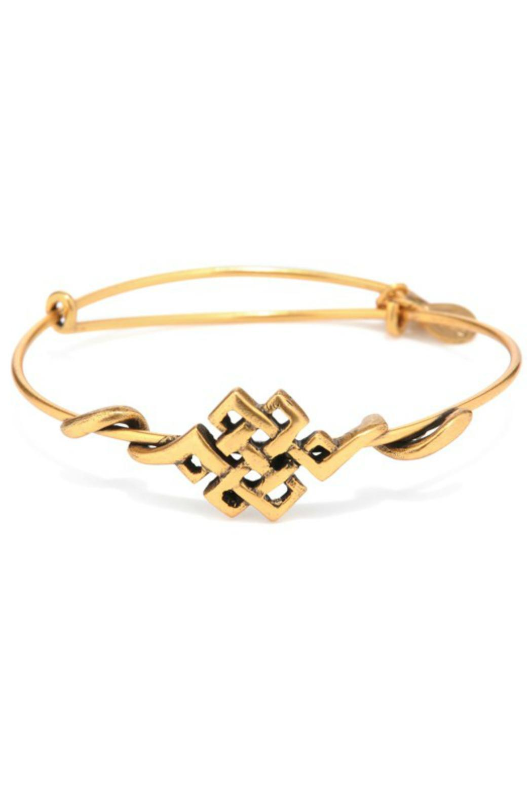 Alex and Ani Endless Knot Wrap - Front Cropped Image