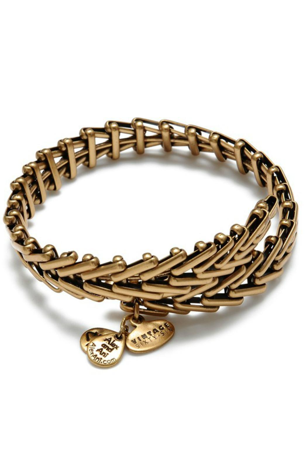 Alex and Ani Gypsy 66 Bangle - Front Cropped Image