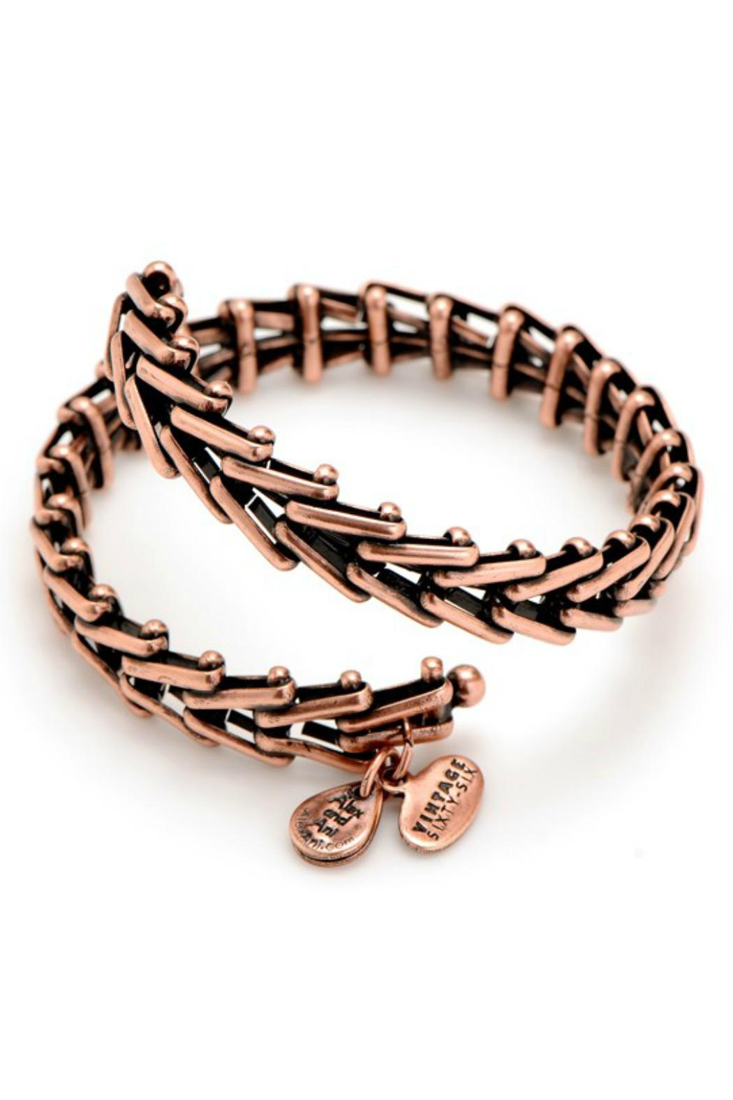 Alex and Ani Gypsy 66 Bangle - Front Full Image