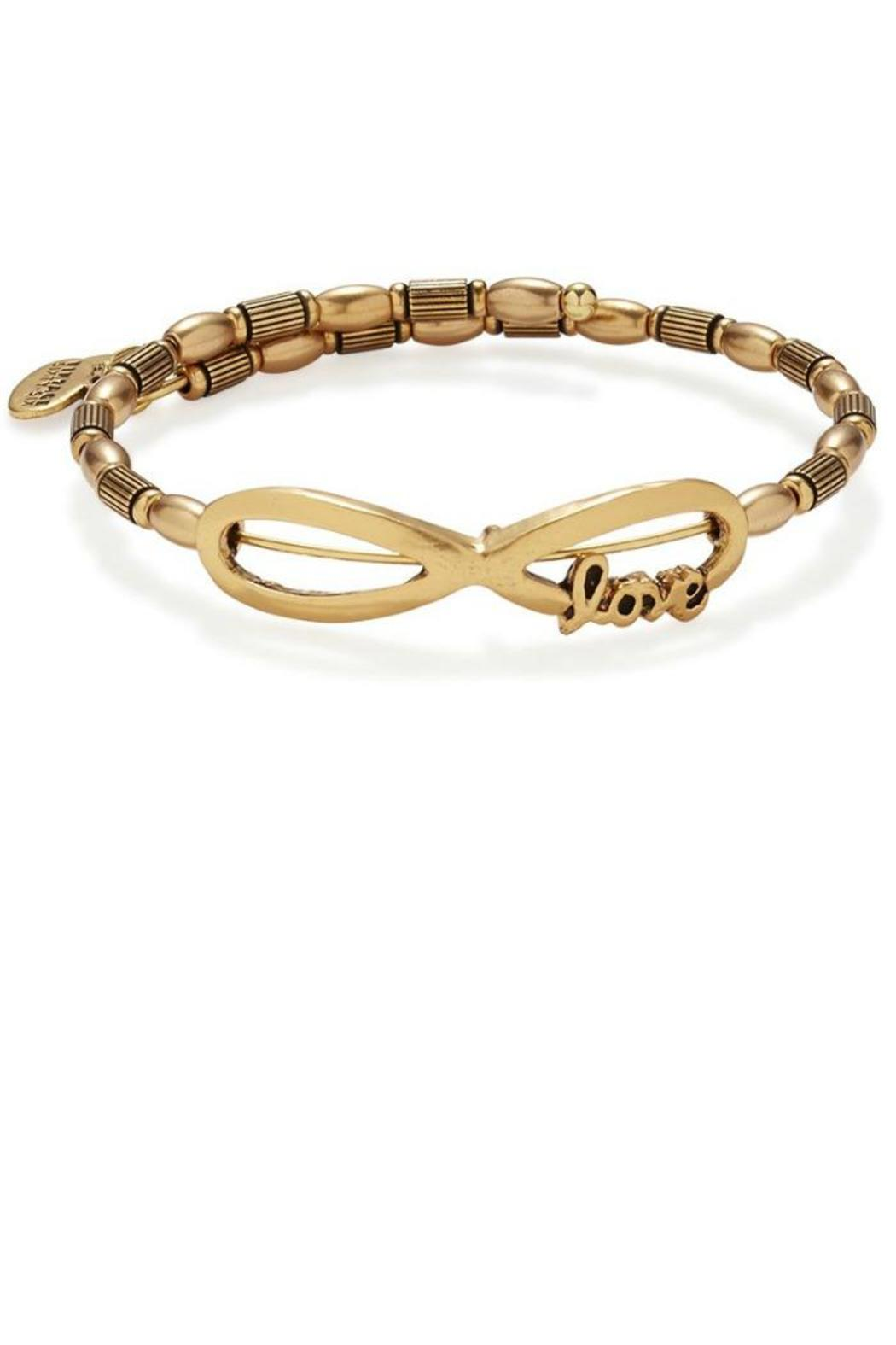Alex And Ani Infinity Love Wrap Front Cropped Image