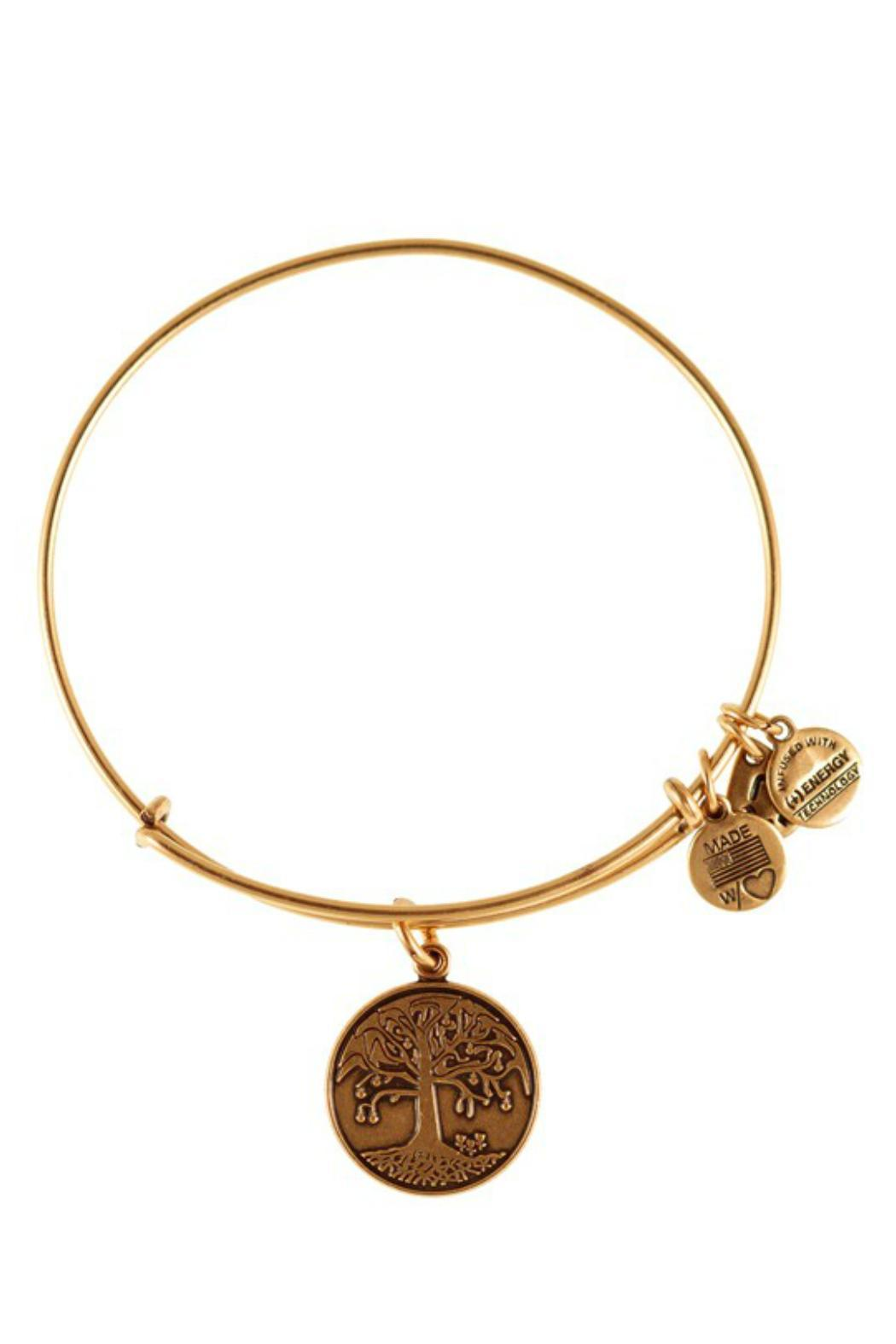 """Alex and Ani Alex And Ani """"Tree Of Life"""" Expandable Bangle - Front Cropped Image"""
