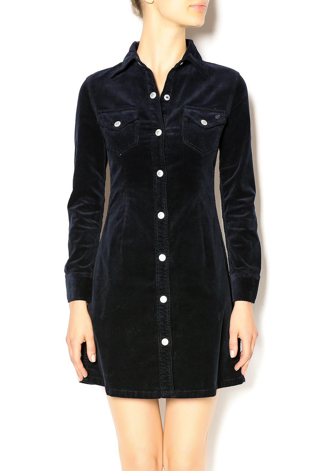 060a4cfd20 Alexa Chung for AG Pixie Dress from Park City by Mary Jane s ...