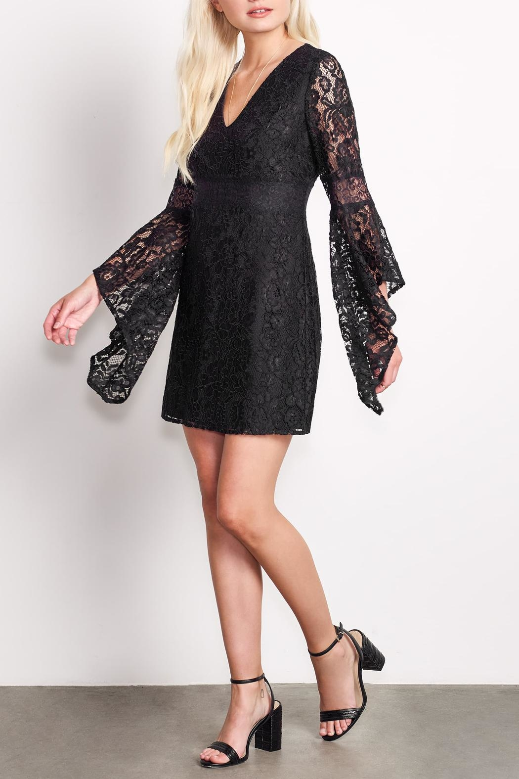 Ali & Jay Lace Bellsleeve Mini - Front Cropped Image