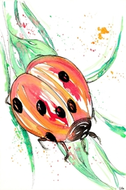 AliAnn's Children's Boutique Lady Bug Print - Product Mini Image