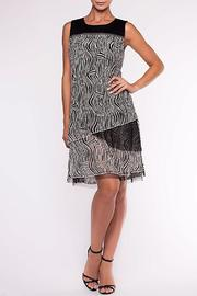 Alison Sheri Black & White Dress - Front cropped