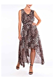 Alison Sheri Leopard Hi/lo Dress - Front cropped