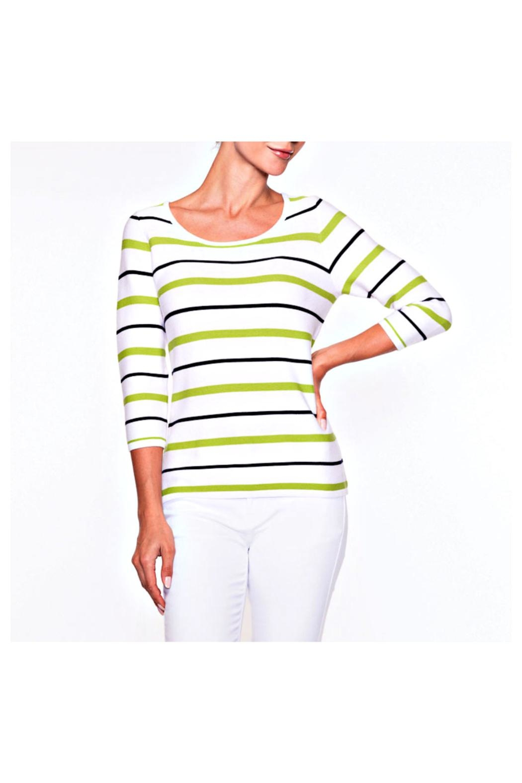 Alison Sheri Lime Stripe Sweater - Front Cropped Image
