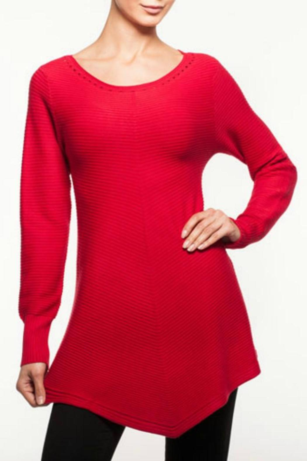 Alison Sheri Long Sleeve Sweater Tunic from Washington by Curvy ...