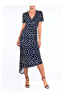 Alison Sheri Polka Dot Dress - Alternate List Image