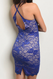 The Sang All Over Lace Bodycon - Front full body