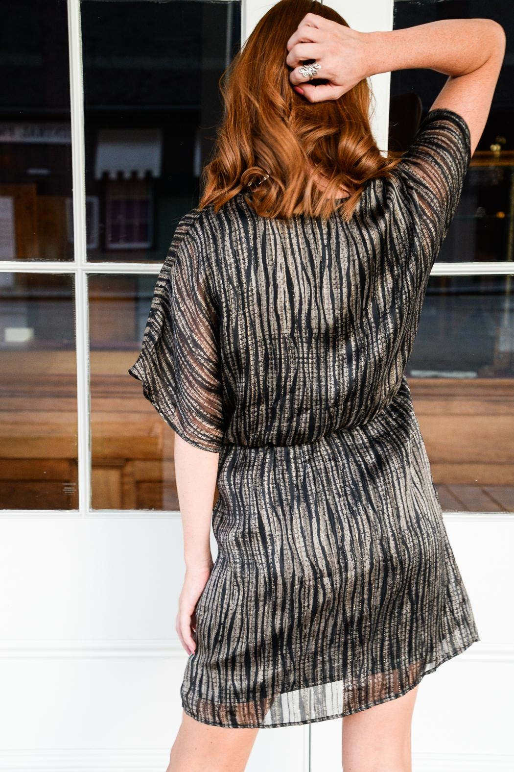 All In Favor It's All In The Detail Dress - Back Cropped Image