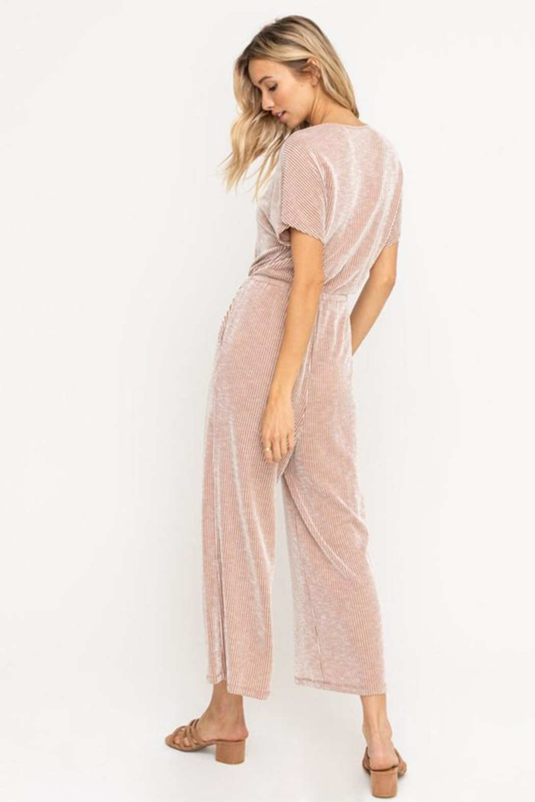 All In Favor Soft Knit Jumpsuit - Back Cropped Image
