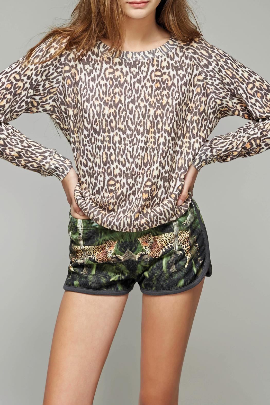 All Things Fabulous Cheetah Print Cozy Sweater - Back Cropped Image