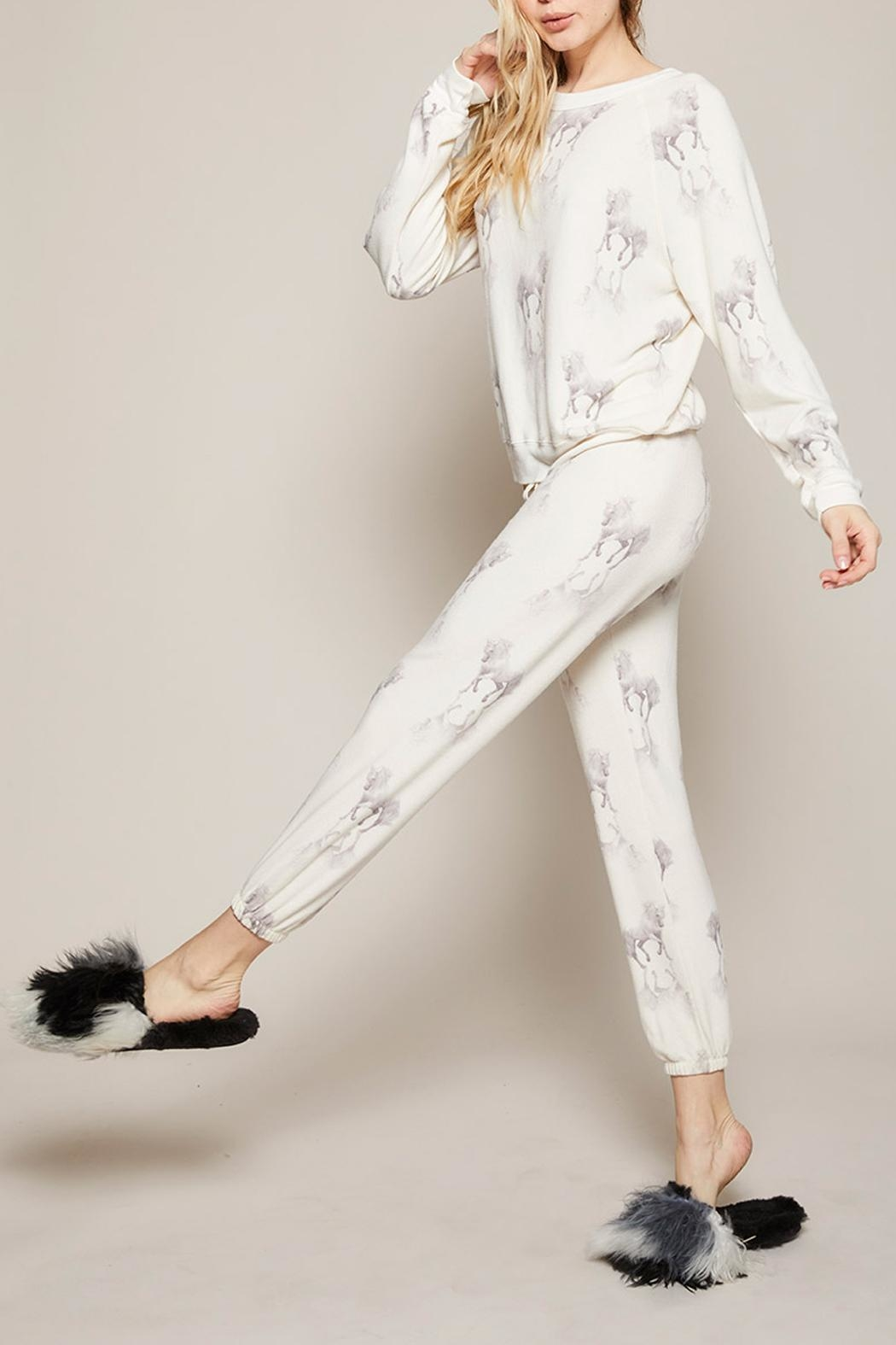 All Things Fabulous Horses Cozy Sweats - Front Cropped Image