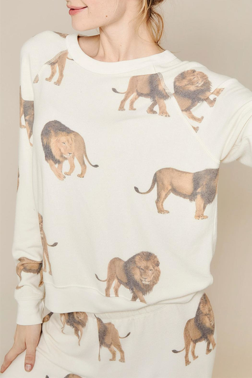 All Things Fabulous Lions Cozy Jumper - Main Image