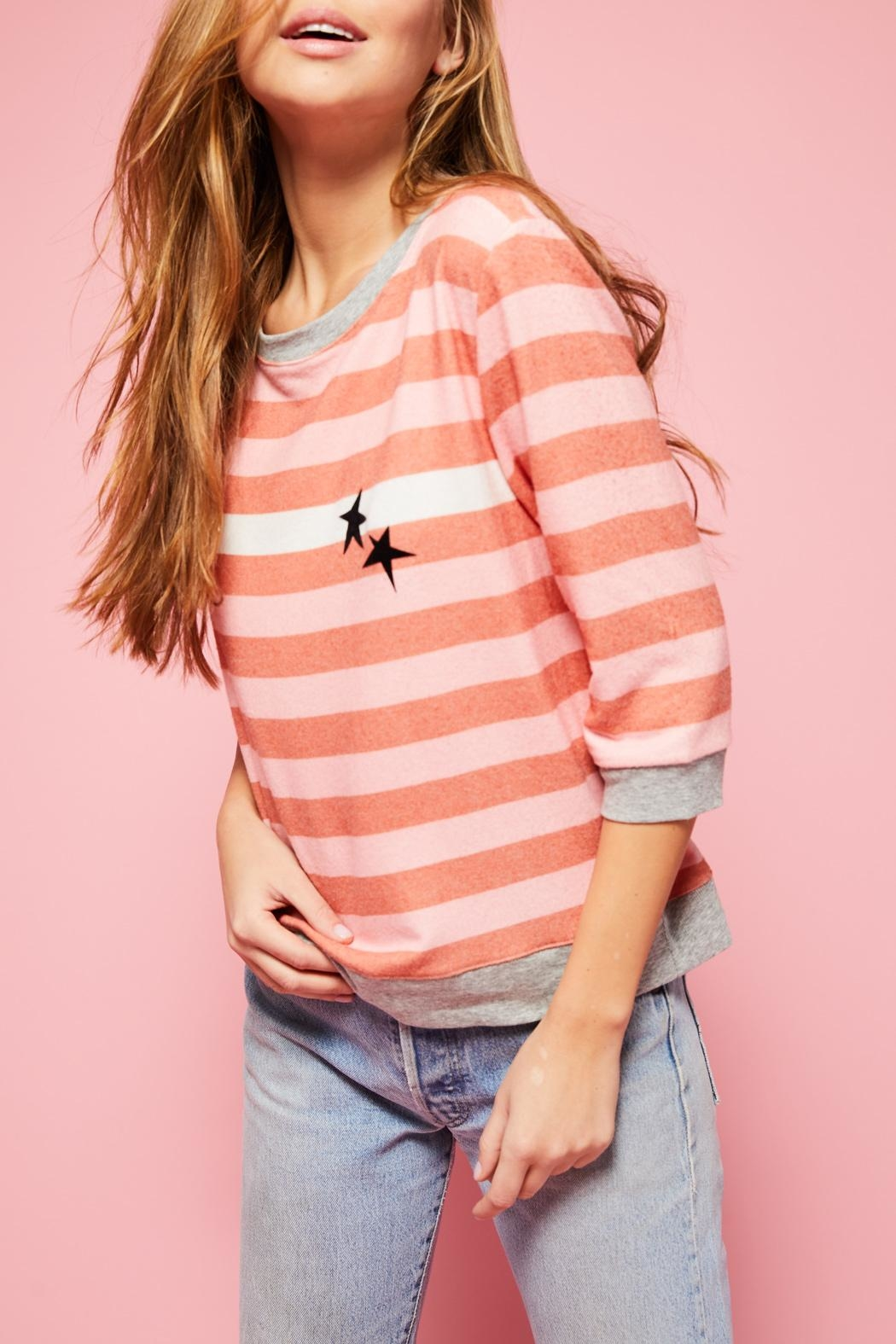 All Things Fabulous White Stripes Cozy - Back Cropped Image