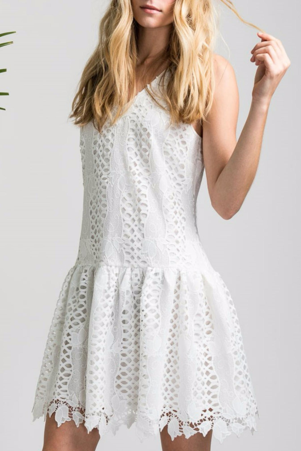 Allison Collection Tulip Lace Dress - Front Cropped Image