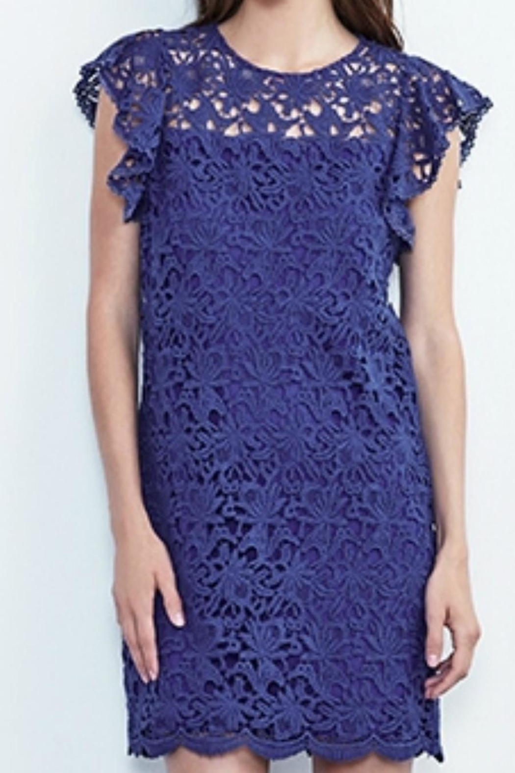 Velvet Ally Lace Dress - Front Cropped Image