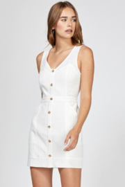 Greylin Althea Button Up Dress - Front cropped