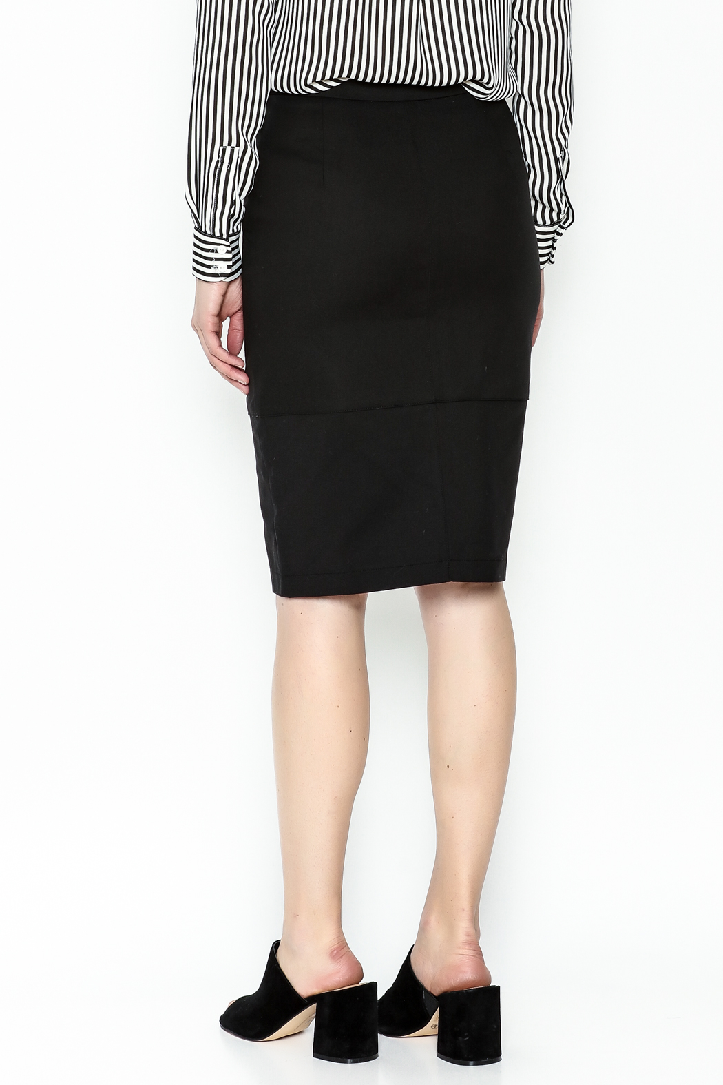 Alythea Black Pencil Skirt - Back Cropped Image