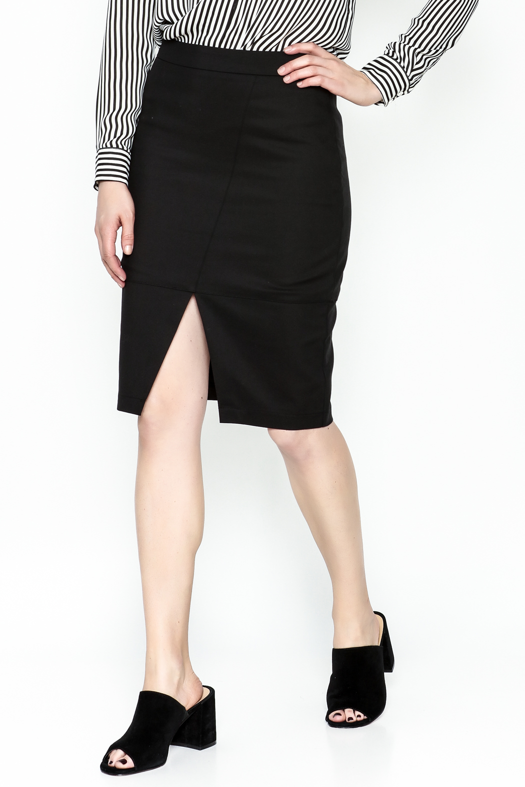 Alythea Black Pencil Skirt - Front Cropped Image