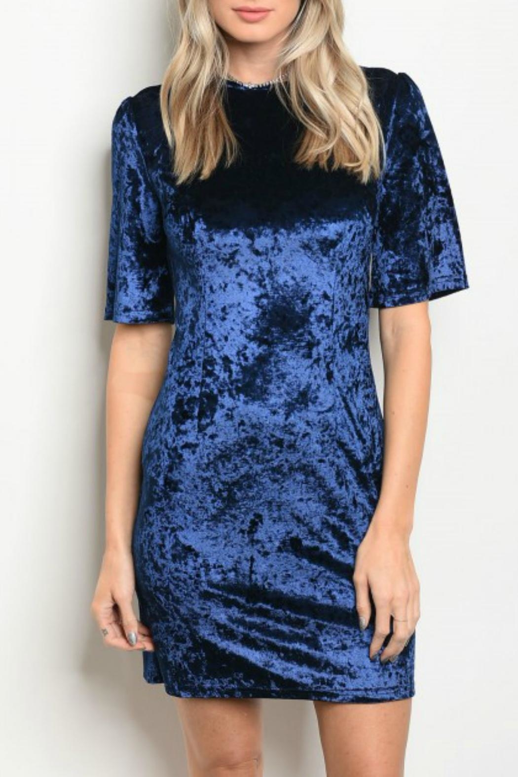 Alythea Midnight Velvet Dress - Front Cropped Image