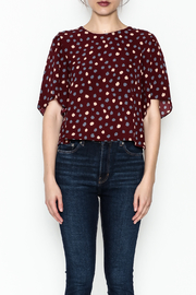 Alythea Polka Dot Top - Front full body