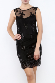 Alythea Sequin Mesh Dress - Product Mini Image
