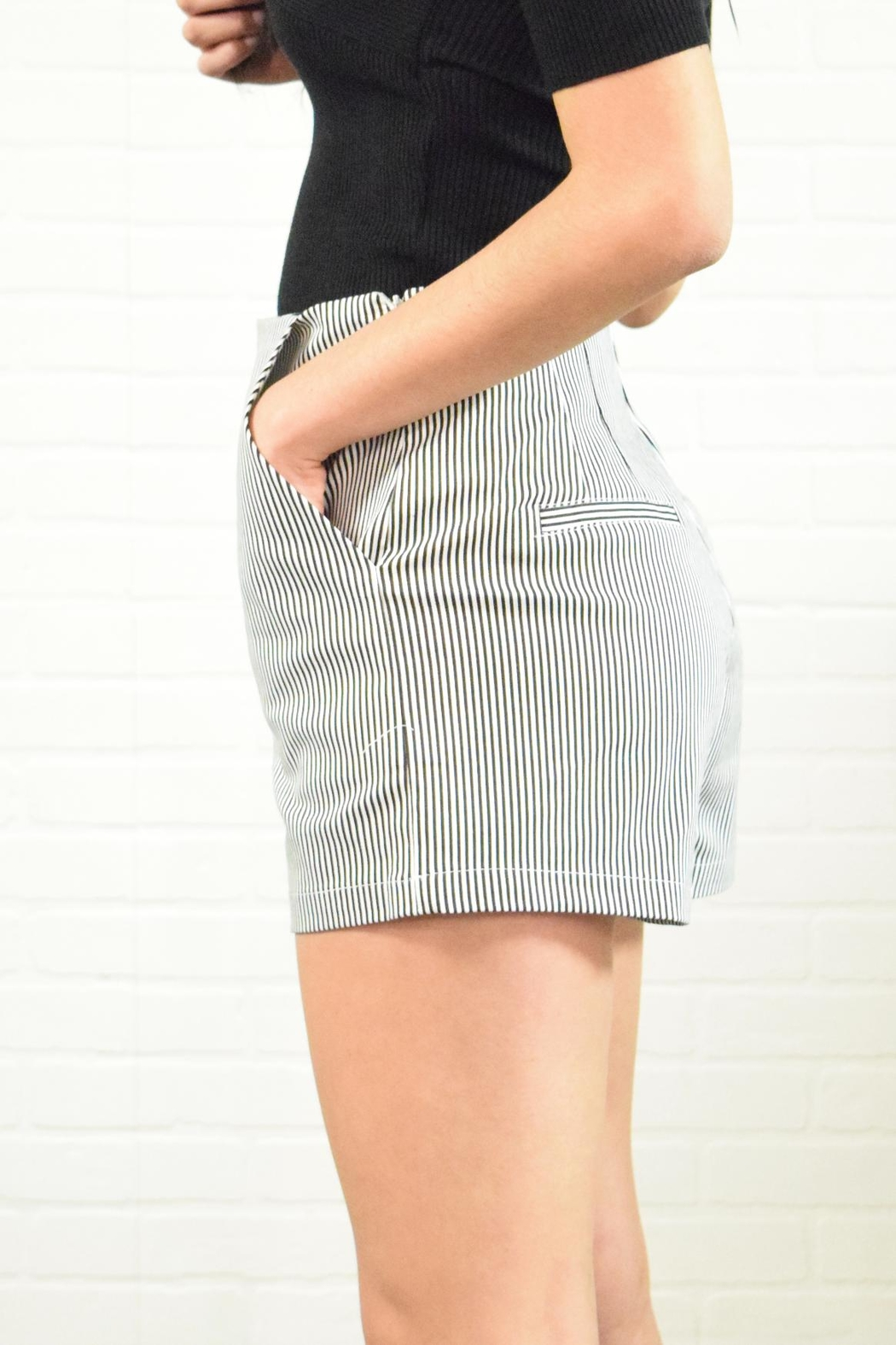 Alythea Stripe Shorts - Front Full Image