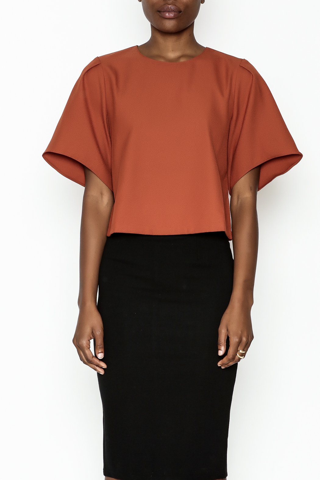 Alythea Wide Sleeve Crop Blouse - Front Full Image
