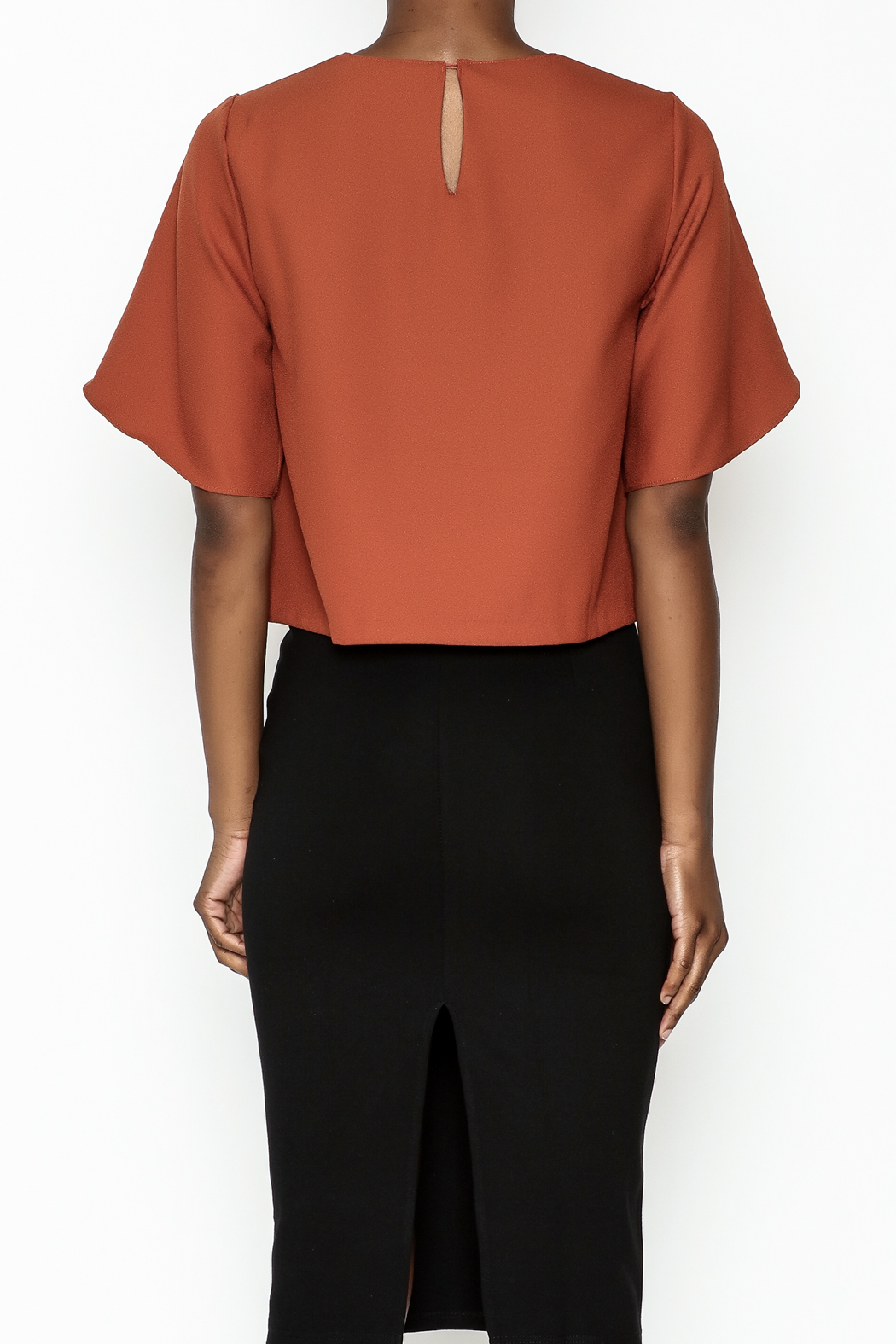 Alythea Wide Sleeve Crop Blouse - Back Cropped Image