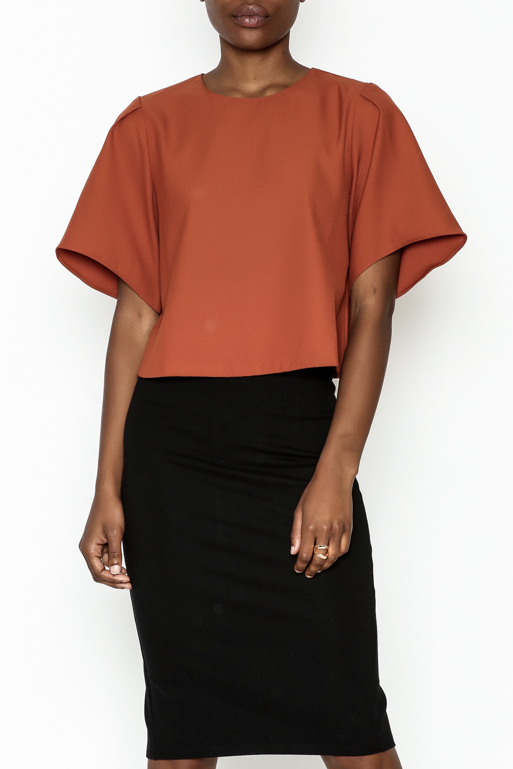 Alythea Wide Sleeve Crop Blouse - Front Cropped Image