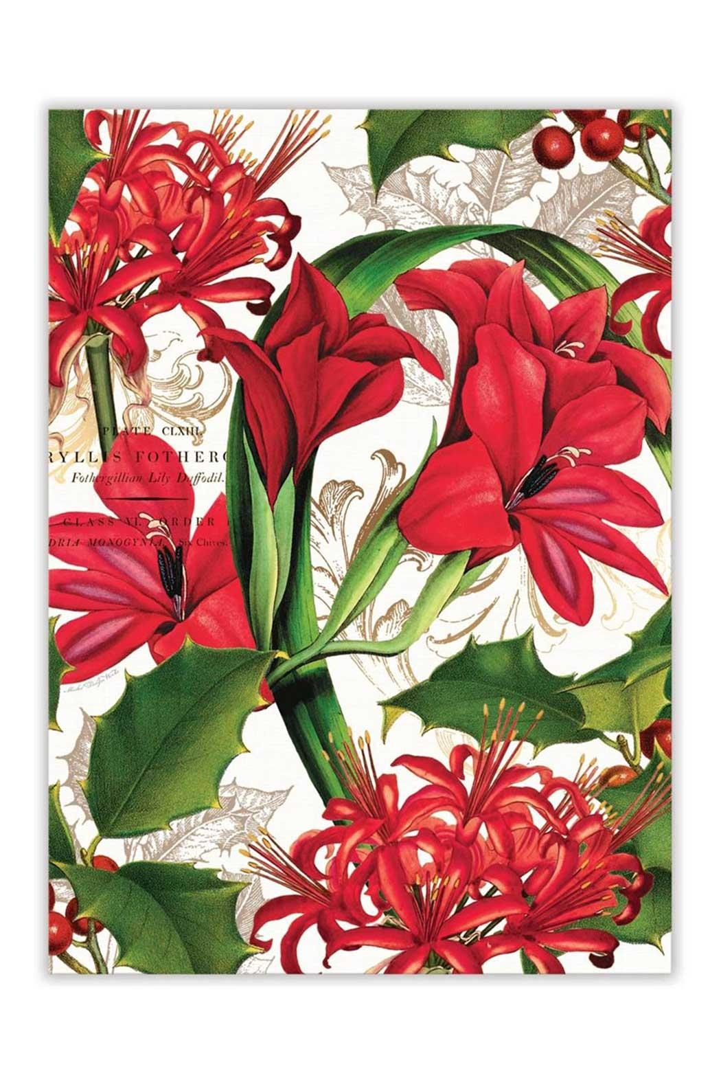 Michel Design Works Amaryllis Kitchen Towel - Front Cropped Image