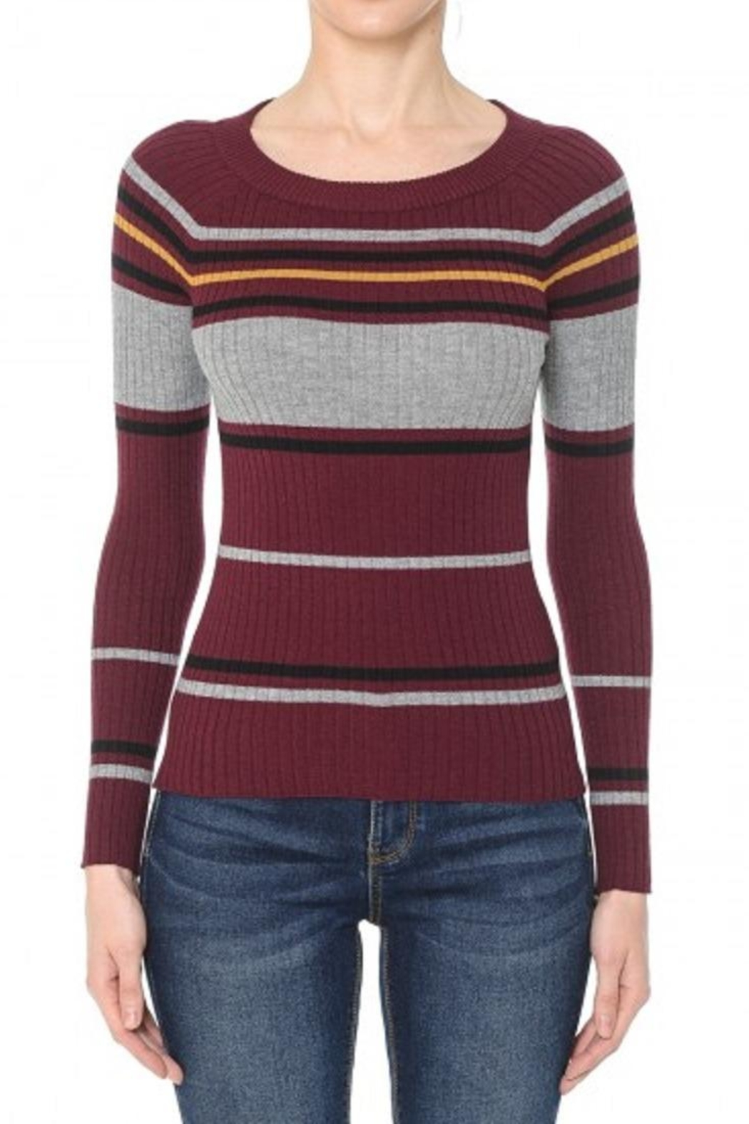 Ambiance Multi-Striped Ribbed Sweater/top - Main Image
