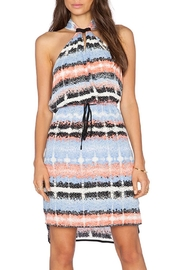 Greylin Amelie Halter Dress - Product Mini Image