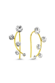 Amorium Jewelry Scattered Round Earring - Product Mini Image