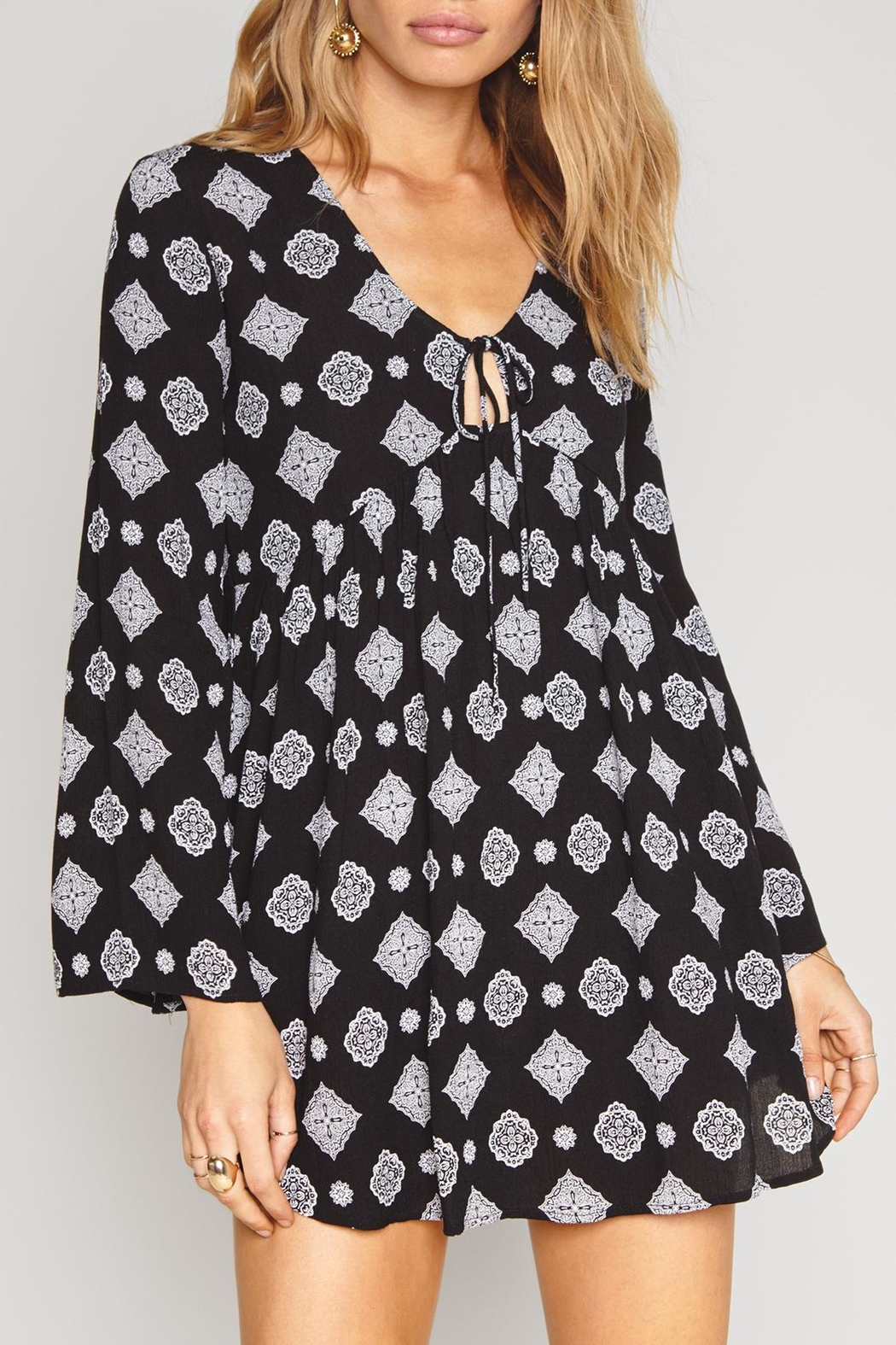 AMUSE SOCIETY Aden Dress - Front Cropped Image