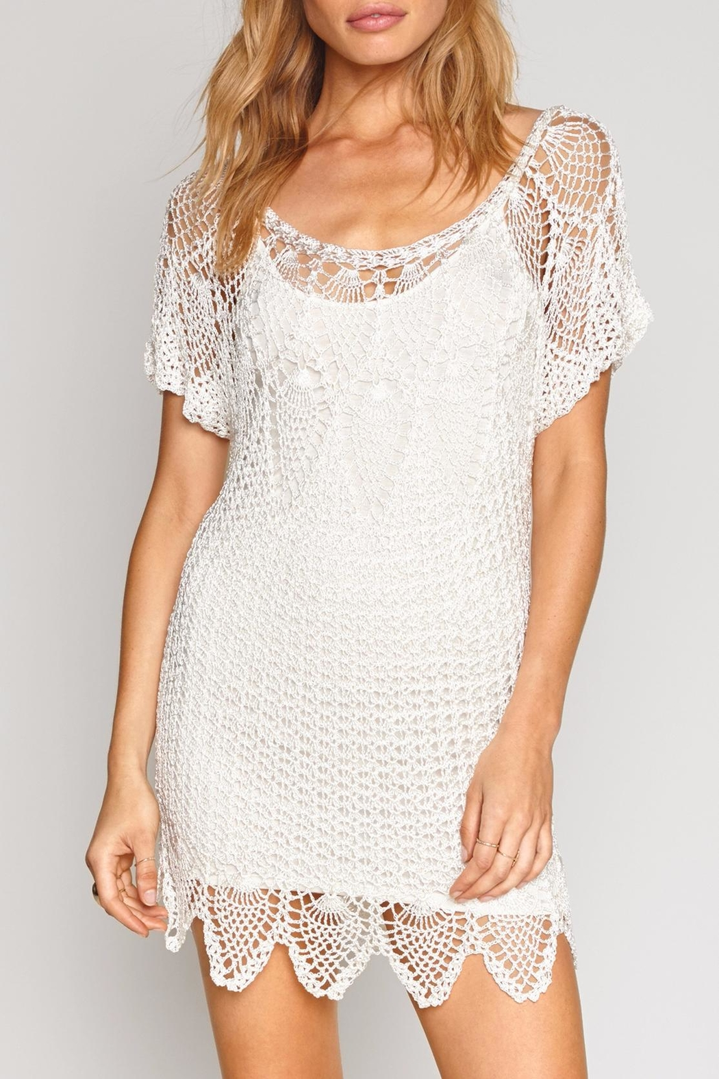 AMUSE SOCIETY Honora Crochet Dress - Front Cropped Image