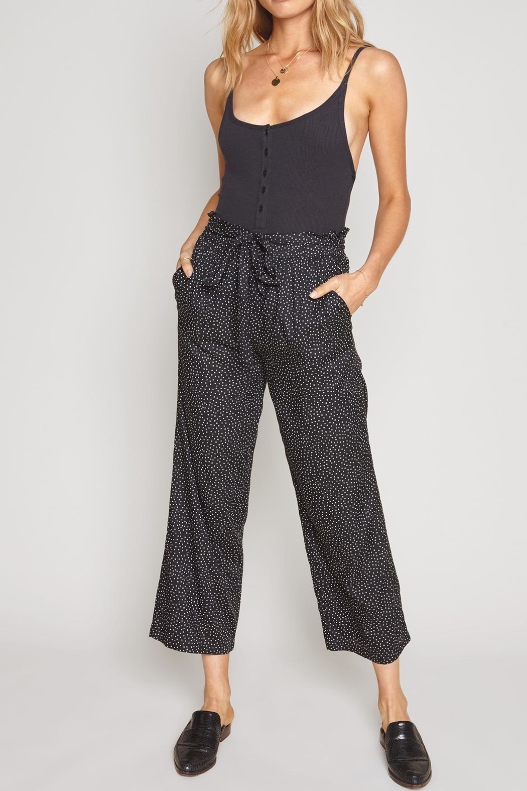AMUSE SOCIETY Iver Pants - Front Cropped Image