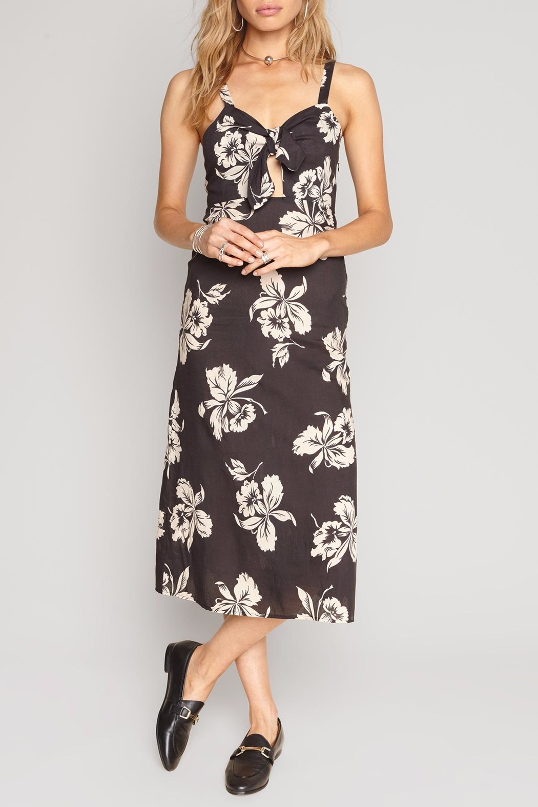 AMUSE SOCIETY Maude Dress - Side Cropped Image
