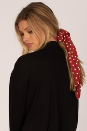 AMUSE SOCIETY Scrunchie Scarf - Front cropped